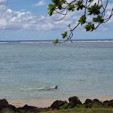 06-25-13 Annini Reef and Kauai North Shore - IMGP9332.JPG