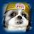 GuccizBud avatar image