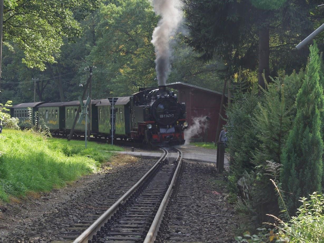 Die Dampflok Kleinbahn im Lößnitzgrund in Radebeul bei Dresden