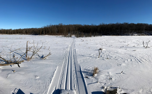 Cutting track between Twin Lakes, part of Wavy Gravy and Island Lake trails