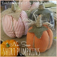 CONFESSIONS OF A PLATE ADDICT No-Sew Shirt Pumpkins 1