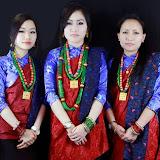 Tamu Pye Lhu Sangh UK Lhosar Celebration 2013. Photos: Milan Tamu / HKNepal.com