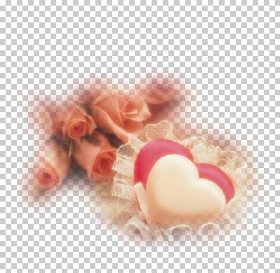 mod_article939857_69.jpg