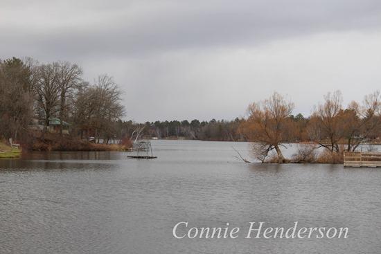 November 6 Mill Pond (2)