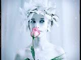 Silent Bride Maiden