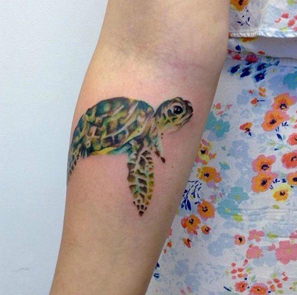 Esta aquarela tartaruga no antebraço