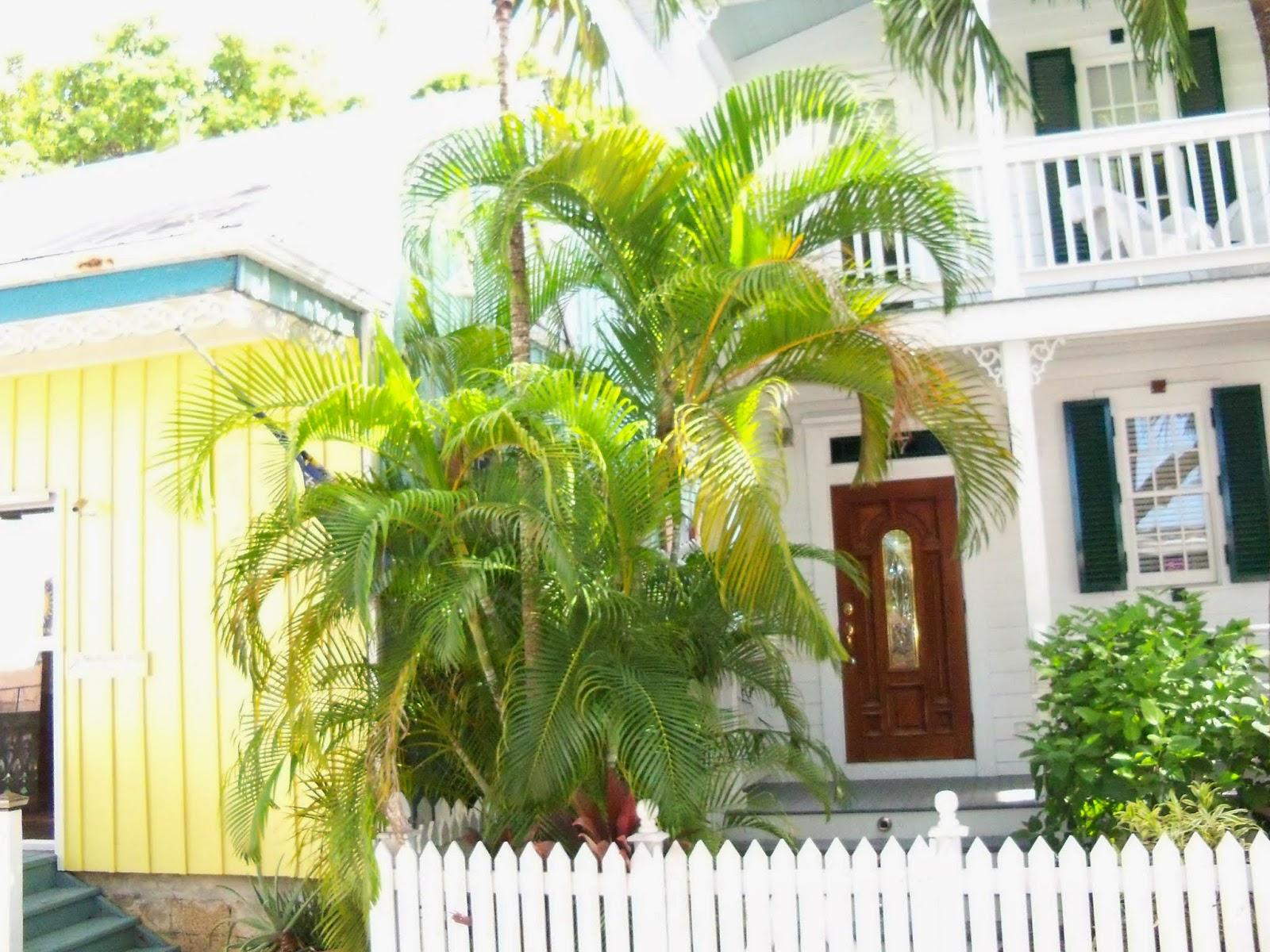 Key West Vacation - 116_5640.JPG