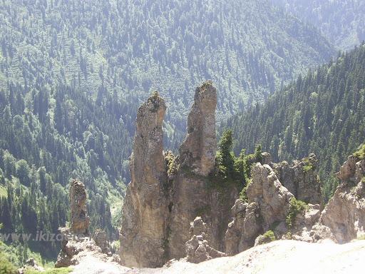 cagrankaya17