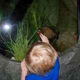 Downtown Aquarium - 116_3872.JPG