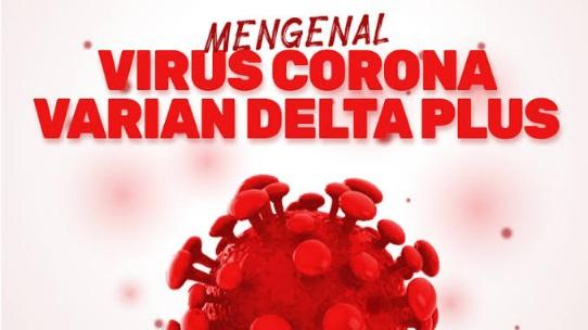 WHO Umumkan Varus Corona Varian Delta Plus, Yuk Kenali
