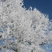 Zima ve Slatině (04).JPG