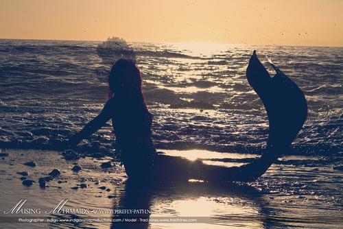 Sunset Mermaid, Mermaids