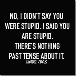 stupid 2
