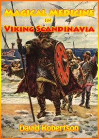 Cover of David Robertson's Book Magical Medicine In Viking Scandinavia
