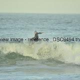 _DSC9494.thumb.jpg