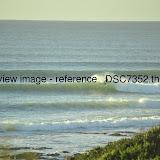 _DSC7352.thumb.jpg