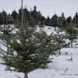Vermont - Winter 2013 - IMGP0502.JPG