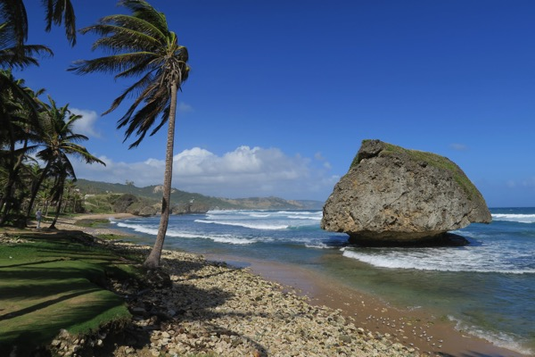 Bathsheba Beach View