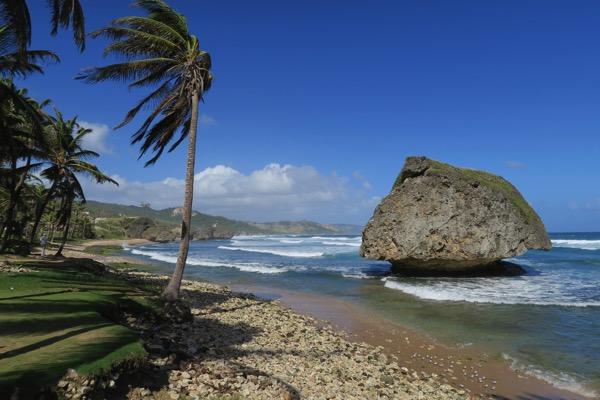 Bathsheba Beach View