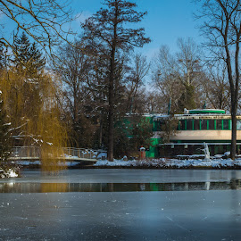 Frozen lake beside zoo building, park Maksimir, Zagreb, Croatia by Nena Volf - City,  Street & Park  City Parks ( city, winter, cold, trees, building, cover, beautiful, white, season, zagreb, zoo, sunny, day, europe, park, sky, natural, reflection, nature, tree, frozen, water, croatia, maksimir, outdoor, blue, freezing, background, snow, bridge, lake, first, landscape )