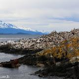 Ilha dos Pássaros, Passeio de barco no Estreito de Magallanes, Ushuaia, Argentina