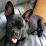 Hetty van Maren's profile photo