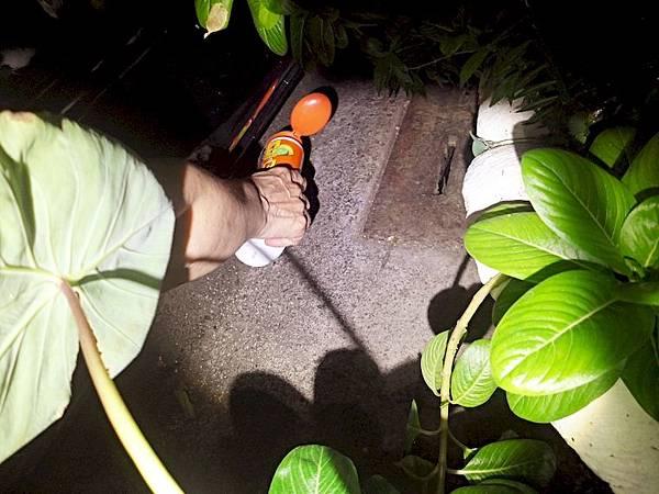 居家生活 ░ 你會需要【貓狗BYE-犬貓忌避劑】,機車坐墊上不時出現貓腳印? 植物盆栽變野貓天然貓砂盆