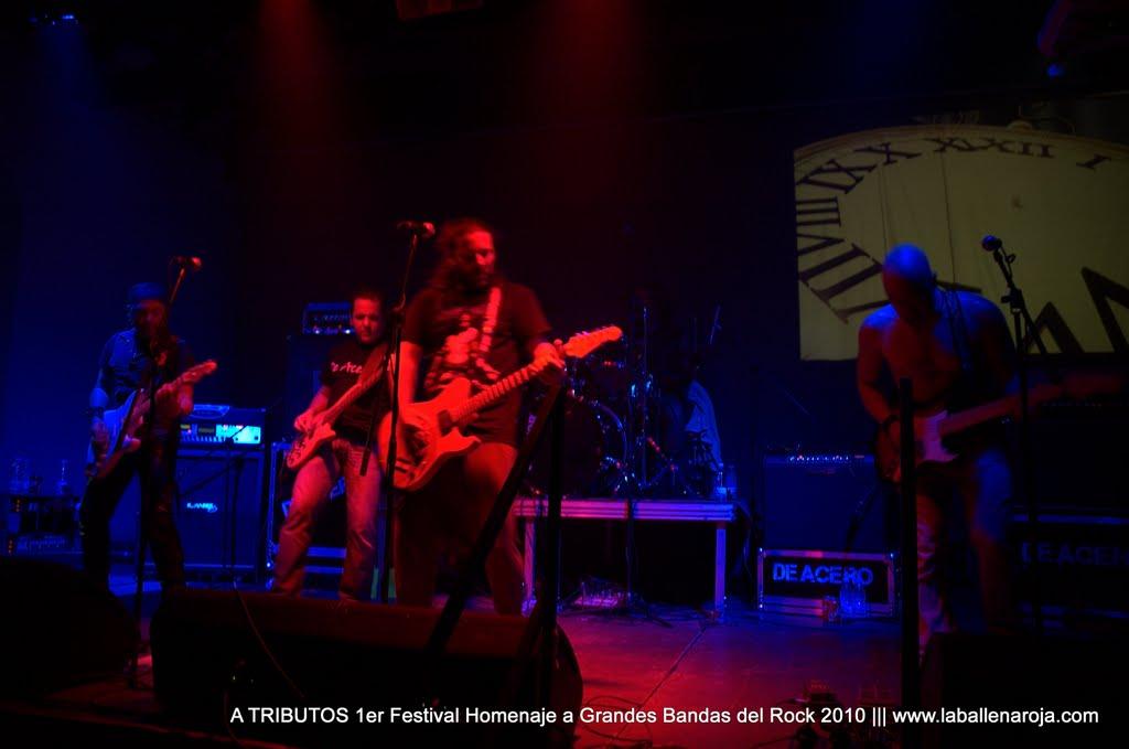 A TRIBUTOS 1er Festival Homenaje a Grandes Bandas del Rock 2010 - DSC_0128.jpg