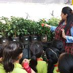 Field Trip to Garden by Sr kg Section at Witty World Bangur Nagar (2017-2018)