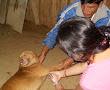 m_saritachanchamayo2010 (1)