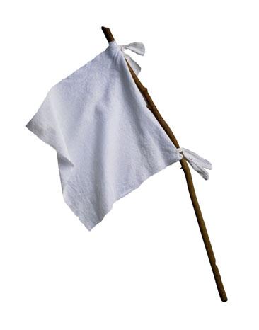 Image result for image of a white surrender flag