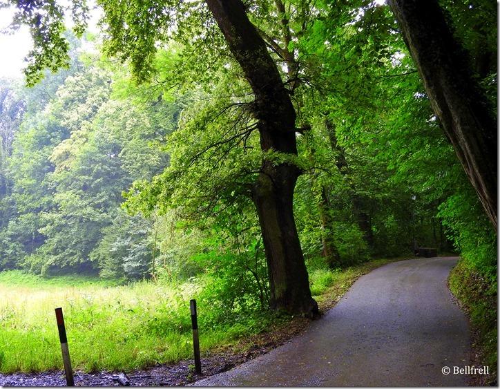 Ein Mönchsbergweg