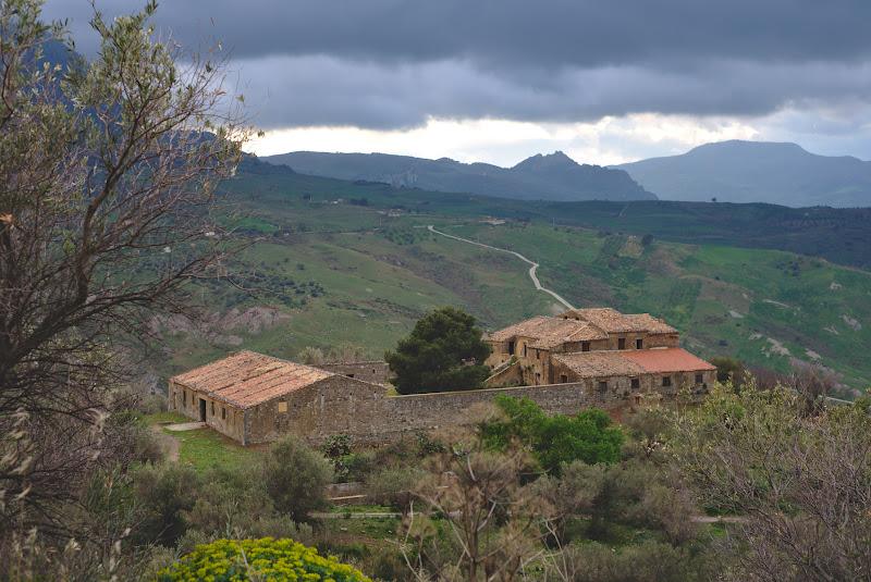 Sicilia e plina de case si conace vechi de sute de ani, acum parasite. Sunt curios cate povesti avea de spus in cazul acesta stejarul din curtea centrala.