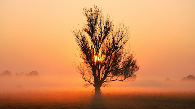 Photography Artists Landscapes Landscape Amp Nature Photography
