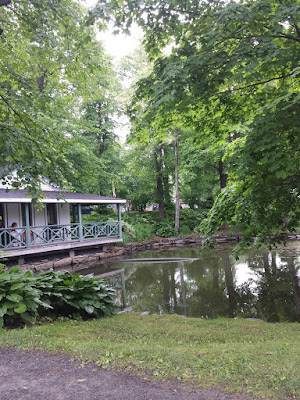 july 2015 (public gardens)