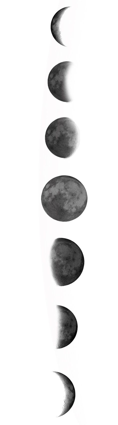 fases de la luna 2