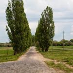 20140510_Fishing_Stara_Moshchanytsia_039.jpg