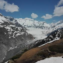 Alpi:Aletschgletscher