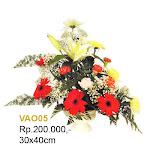 VAO05.jpg