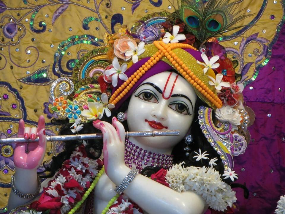 ISKCON Aravade Deity Darshan 22 Dec 2015 (4)