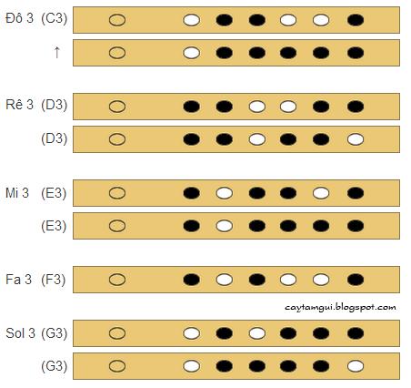 Cách bấm thổi nốt sol 3 trên sáo trúc 6 lỗ