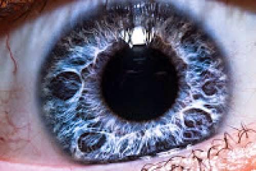 Sacred Sight Improving Vision Naturally