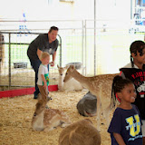 Fort Bend County Fair 2014 - 116_4287.JPG