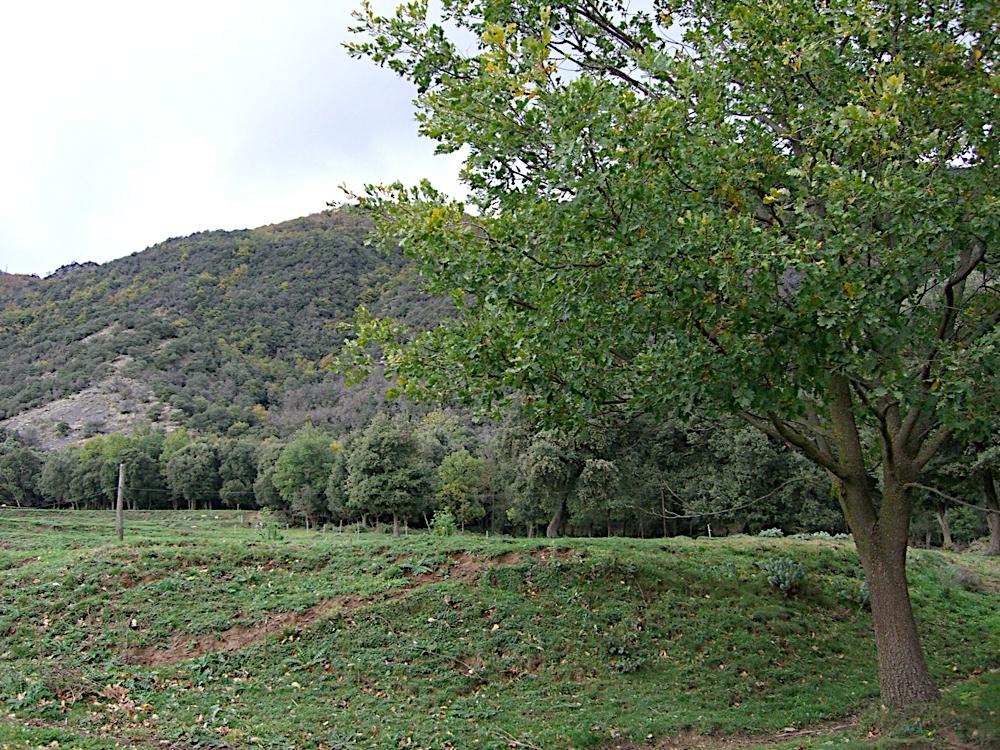 Refugi de Bellmunt 2005 - CIMG4700.JPG