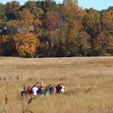 Guilford Salt Meadow Sanctuary Osprey Platform - 10-25-09%2B015.jpg