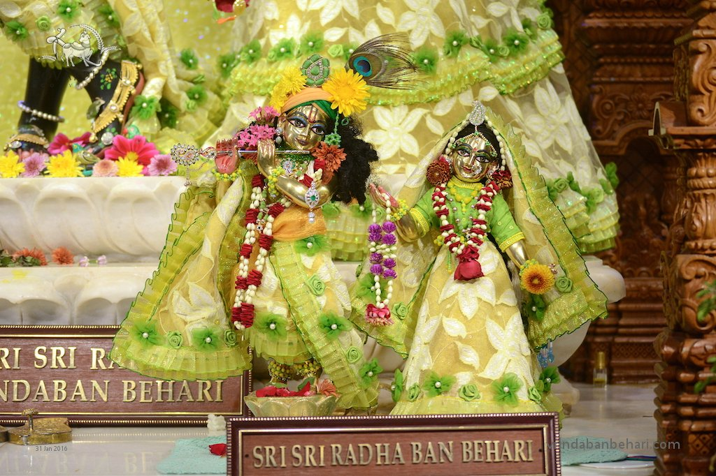 ISKCON GEV (Wada) Deity Darshan 31 Jan 2016 (4)