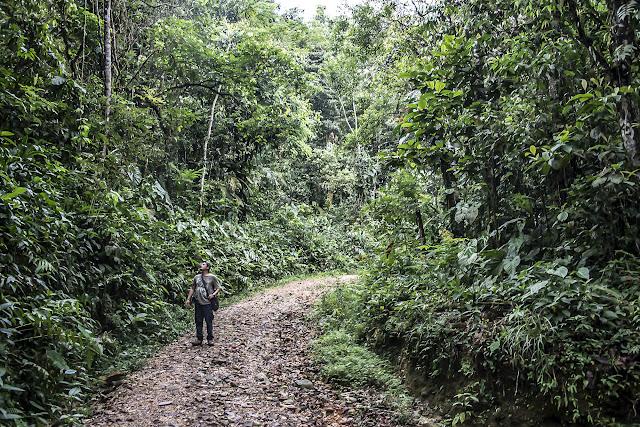 Bosque Bavaria (Villavicencio, Meta, Colombie), 9 novembre 2015. Photo : B. Lalanne-Cassou