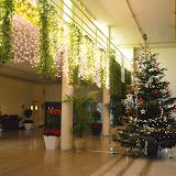 El Nadal ens inspira... - DSC_0121.JPG