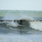 _DSC8781.thumb.jpg