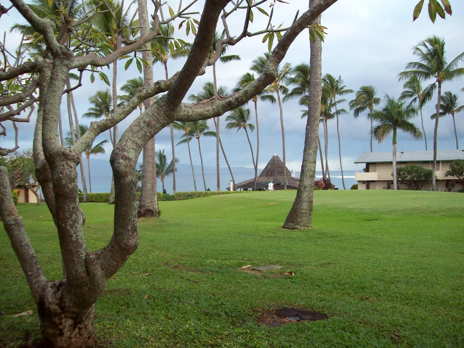 Hawaii Day 8 - 114_2027.JPG